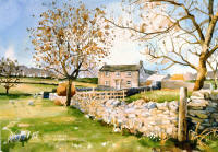 watercolour of Yorkshire Dales with farm sheep & trees