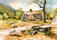 watercolour farmhouse & grazing sheep